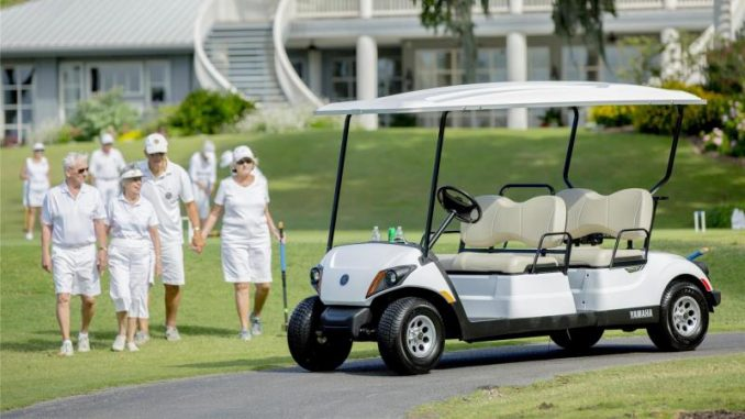 4 Seater Golf Cart - Seeing What Options are Available